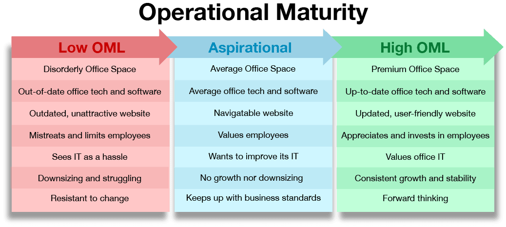 Ideal Client Operational Maturity Domain Computer Services